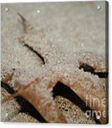 November Sparkle Acrylic Print