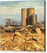 November Winds Acrylic Print