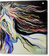 Nuella Horse With The White Shoulder Acrylic Print