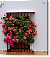 Number 9 - Geraniums In The Window Acrylic Print
