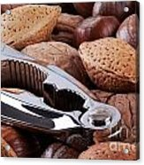 Nutcracker And Whole Nuts Acrylic Print