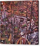 Suzie's Creek Acrylic Print