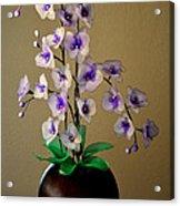 Nylon Stocking Orchid Acrylic Print
