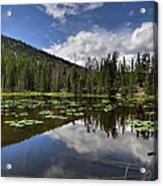 Nymph Lake Acrylic Print
