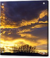 O Glorious Day Acrylic Print