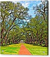 Oak Alley 3 Oil Acrylic Print