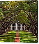 Oak Alley II Acrylic Print by Steve Harrington