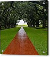 Oak Alley Path Acrylic Print