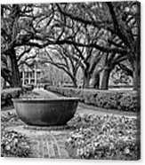 Oak Alley Plantation Landscape In Bw Acrylic Print