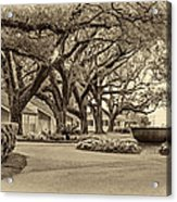Oak Alley Slave Quarters Sepia Acrylic Print
