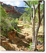 Over Slide Rock Acrylic Print
