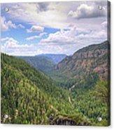 Oak Creek Canyon Acrylic Print by Ricky Barnard