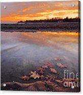 Oak Leaf And Beach Sunset Acrylic Print
