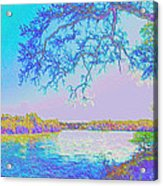 Oak On The Sacramento River - Pastel Acrylic Print