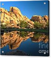 Oasis Reflections Acrylic Print