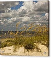 Oat And Dune Vista Acrylic Print
