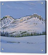 Observation Peak Acrylic Print by Michele Myers