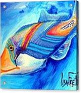 Ocean Blues Solo Acrylic Print