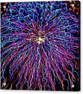 Ocean City Fireworks Acrylic Print by Lisa Merman Bender