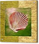 Ocean Life Acrylic Print