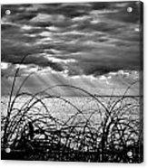 Ocean Rays Black And White Acrylic Print