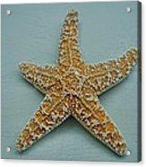 Ocean Star Fish Acrylic Print