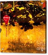 Ochre Wall Silk Lantern 01 Acrylic Print