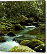 Oconaluftee River Acrylic Print