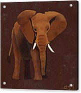 Ocre Elephant Acrylic Print