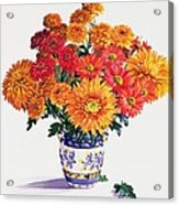 October Chrysanthemums Acrylic Print by Christopher Ryland