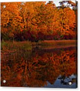 October Mirror Acrylic Print