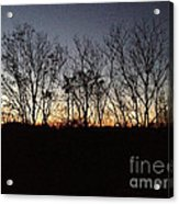 October Sunset Trees Silhouettes Acrylic Print