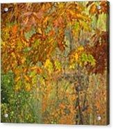 October Watercolors_2 Acrylic Print