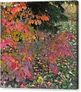 October Watercolors_3 Acrylic Print