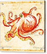 Octopus For Study Acrylic Print