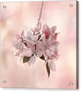 Ode To Spring Acrylic Print
