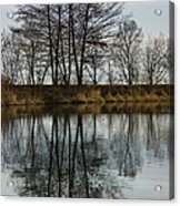 Of Mirrors And Trees Acrylic Print