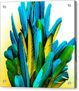 Yellow And Turquoise Acrylic Print by Paulette Maffucci