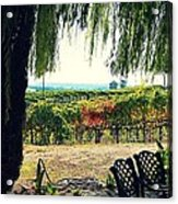 Off Into The Horizon Wine Country Views Acrylic Print