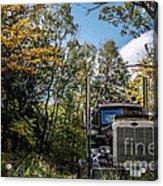 Off Road Trucker Acrylic Print
