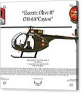 Oh-6a Electric Olive II Loach Acrylic Print
