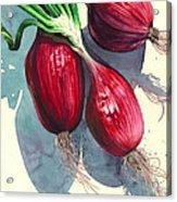 Oh I Like Onions Acrylic Print