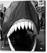 Oh The Shark Bites Acrylic Print