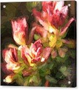 Ohia Leaves Acrylic Print