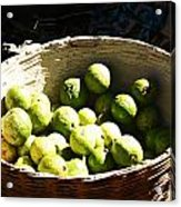 Oil Painting - Based Full Of Guavas Acrylic Print