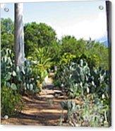Ojai Desert Garden Acrylic Print