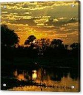 Okavango Sunset Acrylic Print