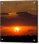 Okeechobee Sunset Acrylic Print