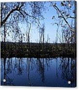 Okefenokee Reflection Acrylic Print