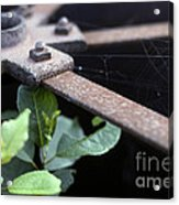 Old Agricultural Instrument Acrylic Print